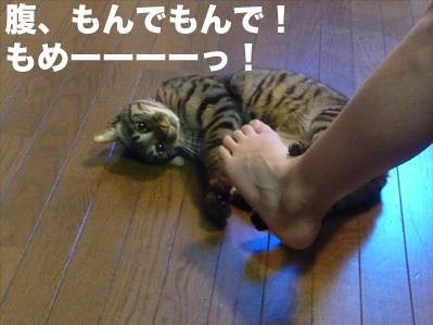 俺をかまえ!2