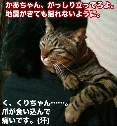 20110419_1.jpg